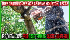 Professional Tree Trimming In Houston, Cypress, Katy, Jersey Village, Tomball And Cypress Texas